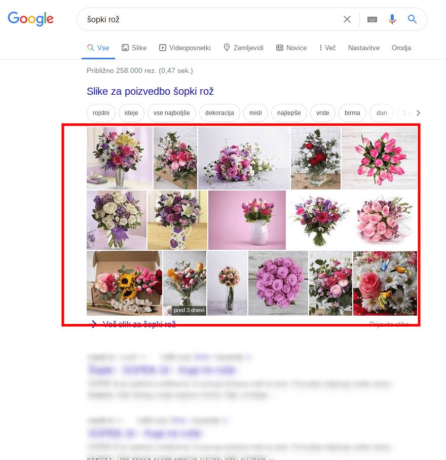kako preveriti spletno stranb search intent